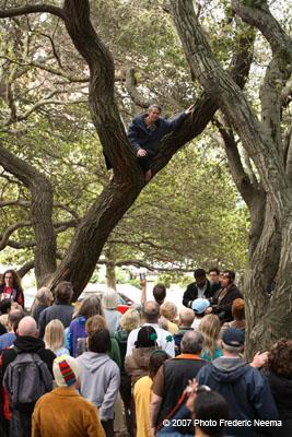 BERKELEY / Getting naked to save oak grove - SFGate